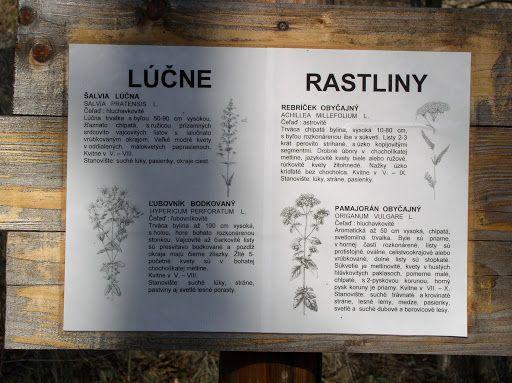 Zdroj: www.naucnechodniky.eu