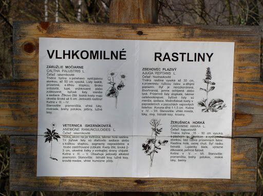 Source: www.naucnechodniky.eu