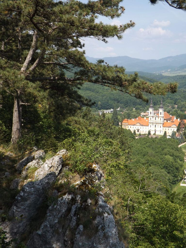 www.idnes.cz